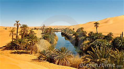 Desert Oasis Stock Photography - Image: 23174972